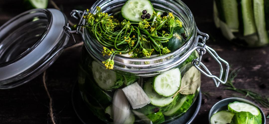 Gefermenteerde dille komkommers